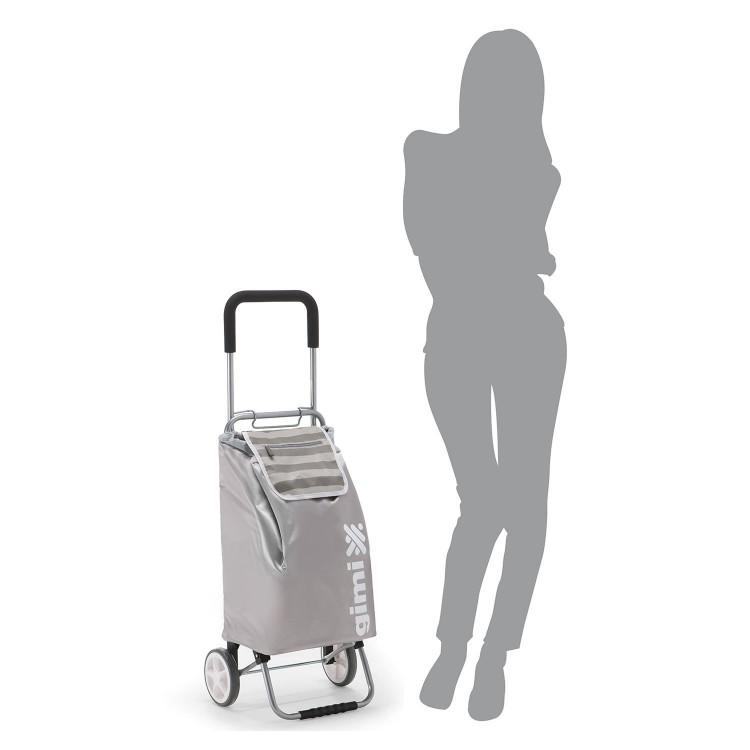 721fbb38ca00 Купить сумку тележку Gimi Flexi хозяйственную на колесах интернет ...