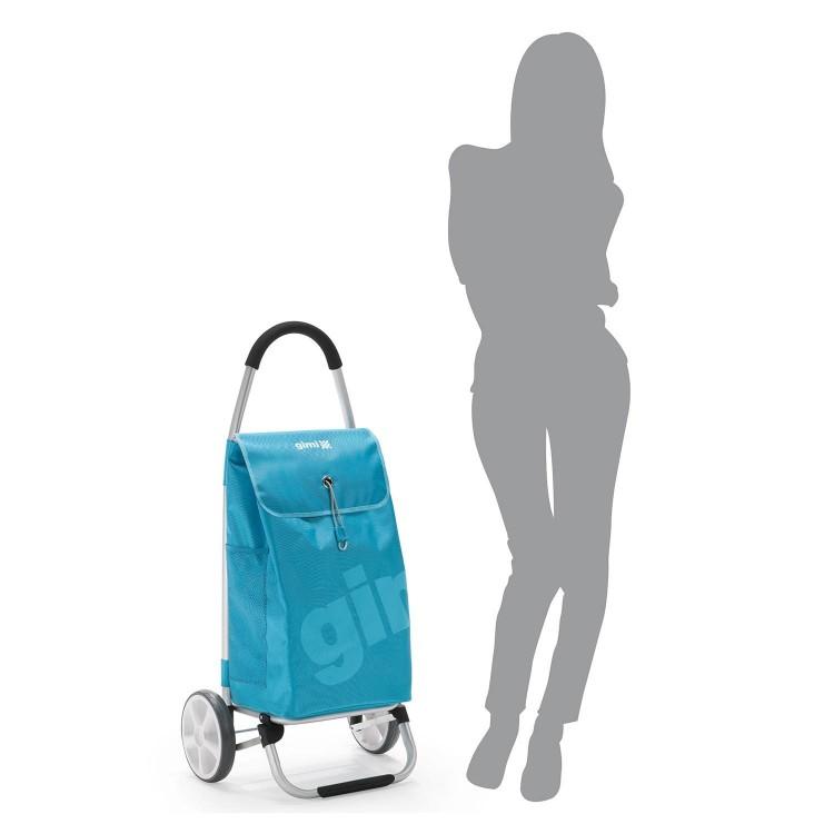 11fd0503d878 Купить сумку-тележку Gimi Galaxy на больших колесах интернет-магазин ...